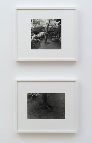 Photograph 6 from Koji Enokura exhibition.