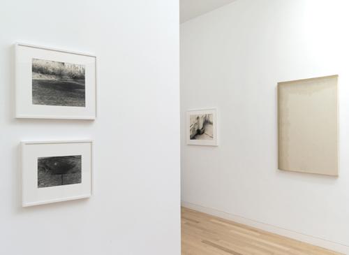 Photograph 2 from Koji Enokura exhibition.