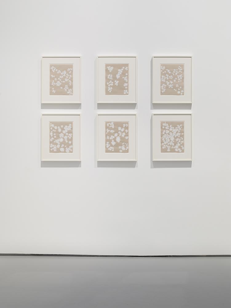 Photograph 7 from Natsuyuki Nakanishi exhibition.