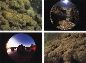 The Earth Rotation, November 8, 1979, 16:05-16:35 - 1979 - Hitoshi Nomura