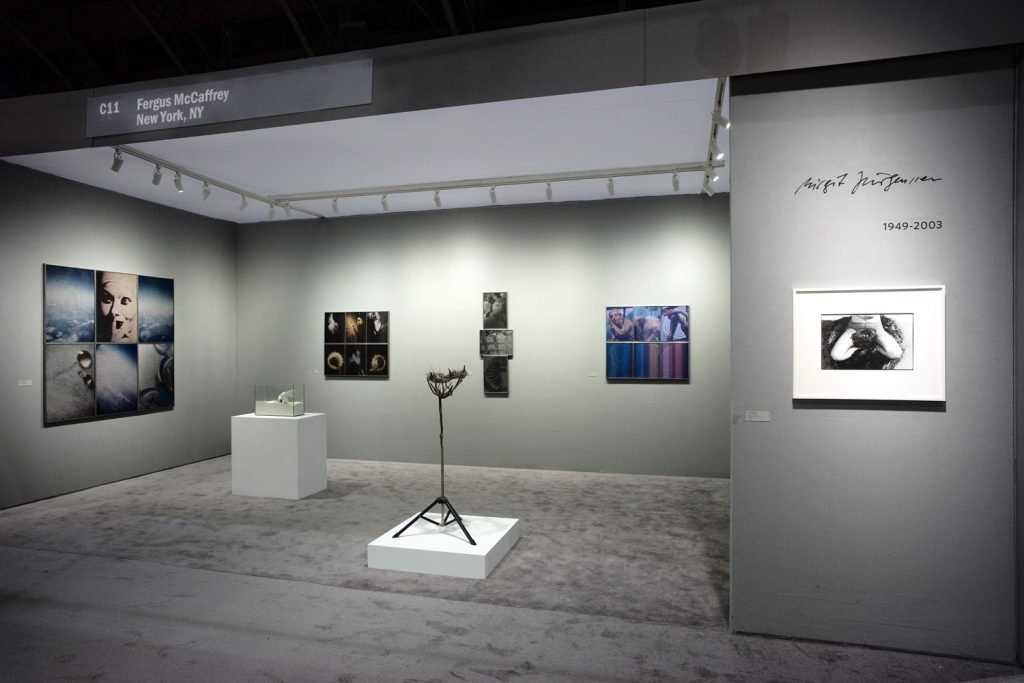 Photograph 1 from ADAA   - 2017