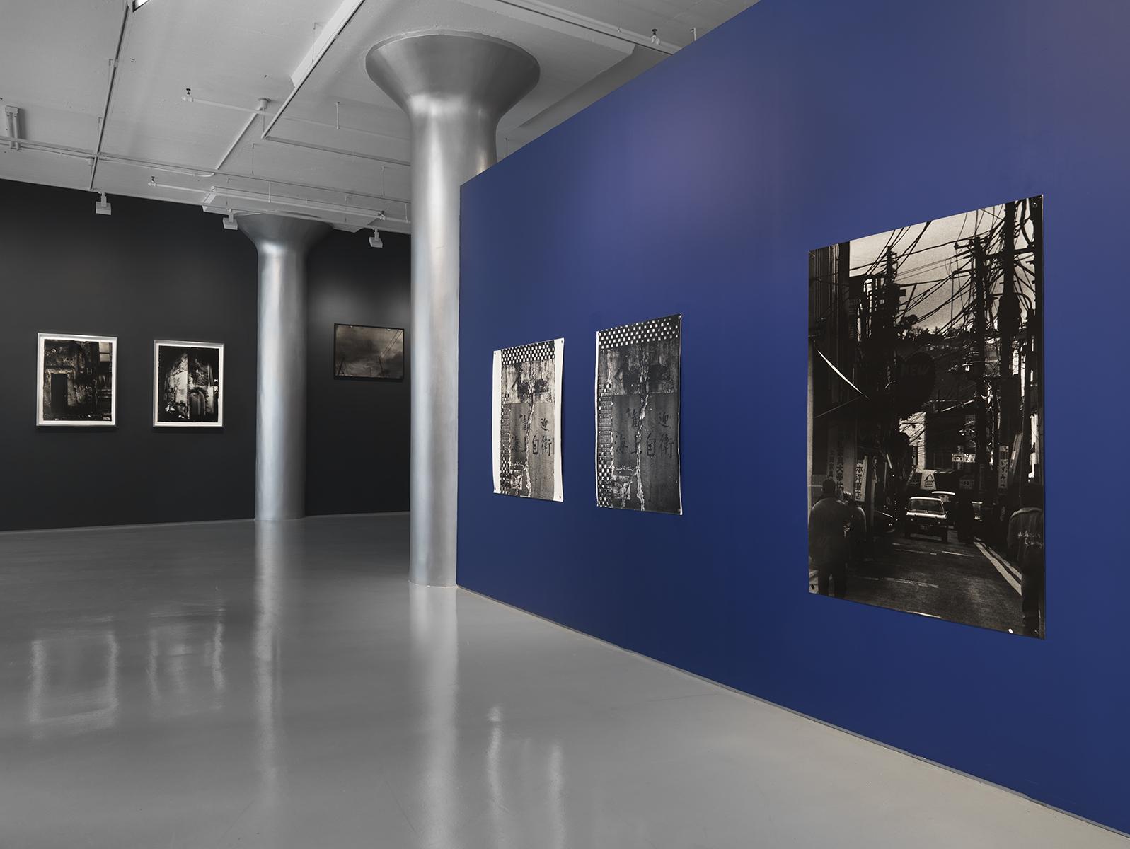 Photograph 1 from Ishiuchi Miyako exhibition.