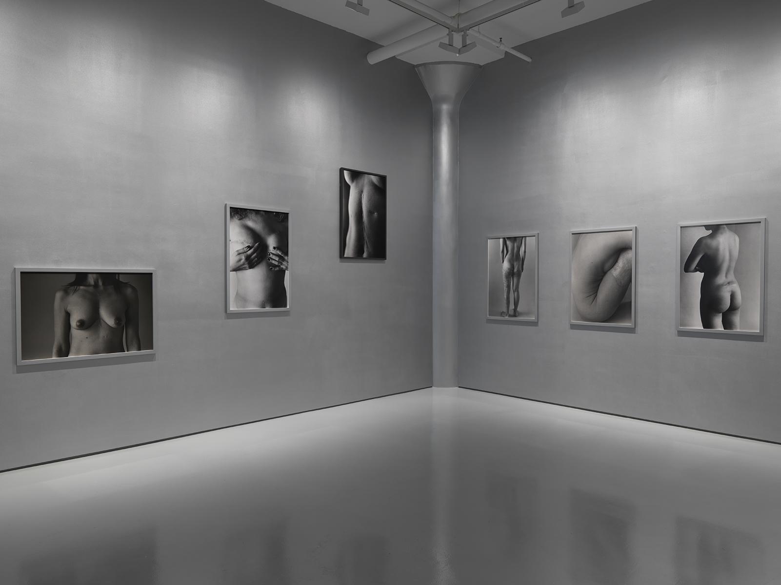 Photograph 3 from Ishiuchi Miyako exhibition.