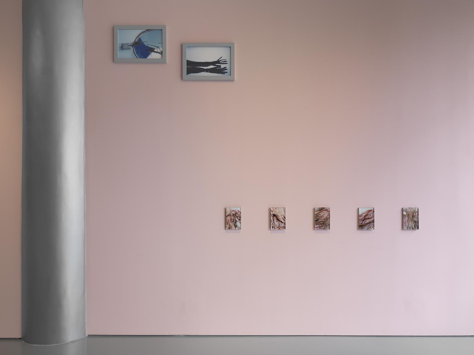 Photograph 5 from Ishiuchi Miyako exhibition.