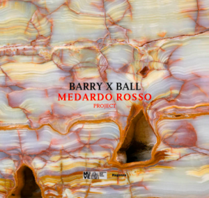 Cover image of Barry X Ball: Medardo Rosso Project